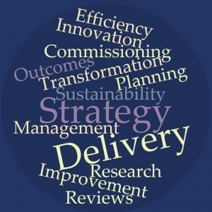 strategy-and-delivery-unit
